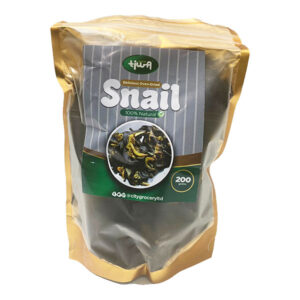 Giant African SNAIL (oven dried)